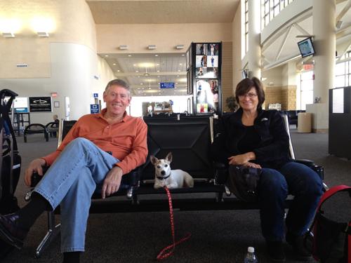 Travel Dog Blog