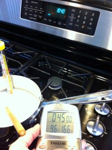 Adventures in the Kitchen with Michelle, Make your own Yogurt!