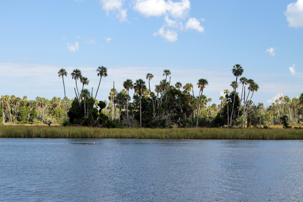 View from Ft. Island Trail, The other side of Crystal River