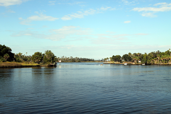 View from Crystal River Preserve State Park