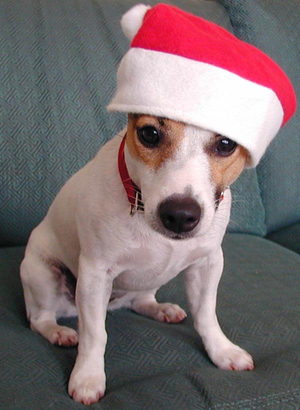 2000 Maggie Christmas