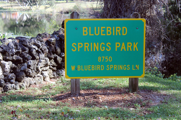 Bluebird Springs Park