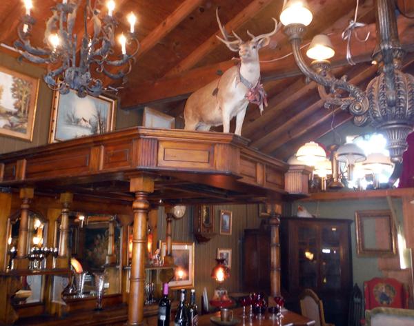 Deer on top of bar