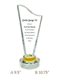 Crystal Trophy CG 360