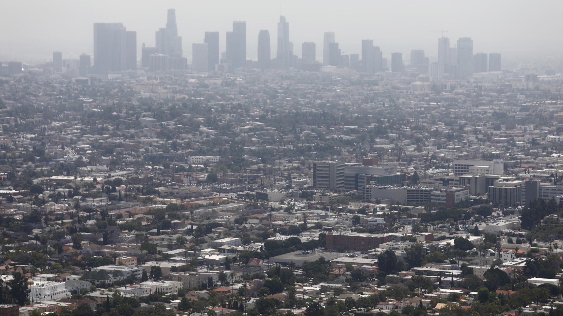 Smog hangs over Los Angeles on a day rated as having 'moderate' air quality on June 11, 2019. (Credit: Mario Tama/Getty Images)