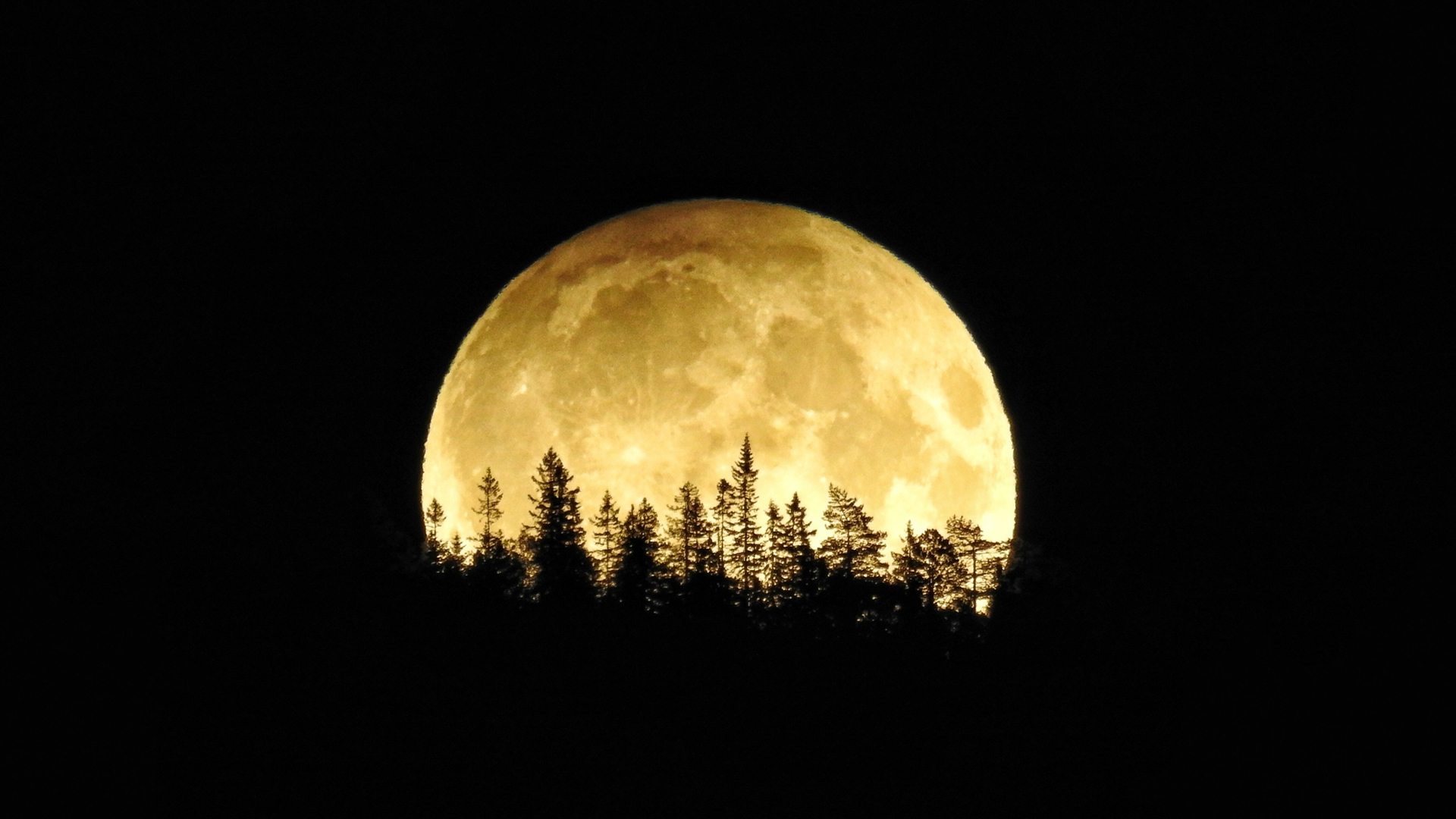 This harvest moon in 2016 is likely far bigger than the one most people will see the night of September 13. This year's harvest moon will appear 14% smaller than a typical full moon because it occurs when the moon is farthest from the Earth. (Credit: Lisbett Lindstad/CNN iReport)