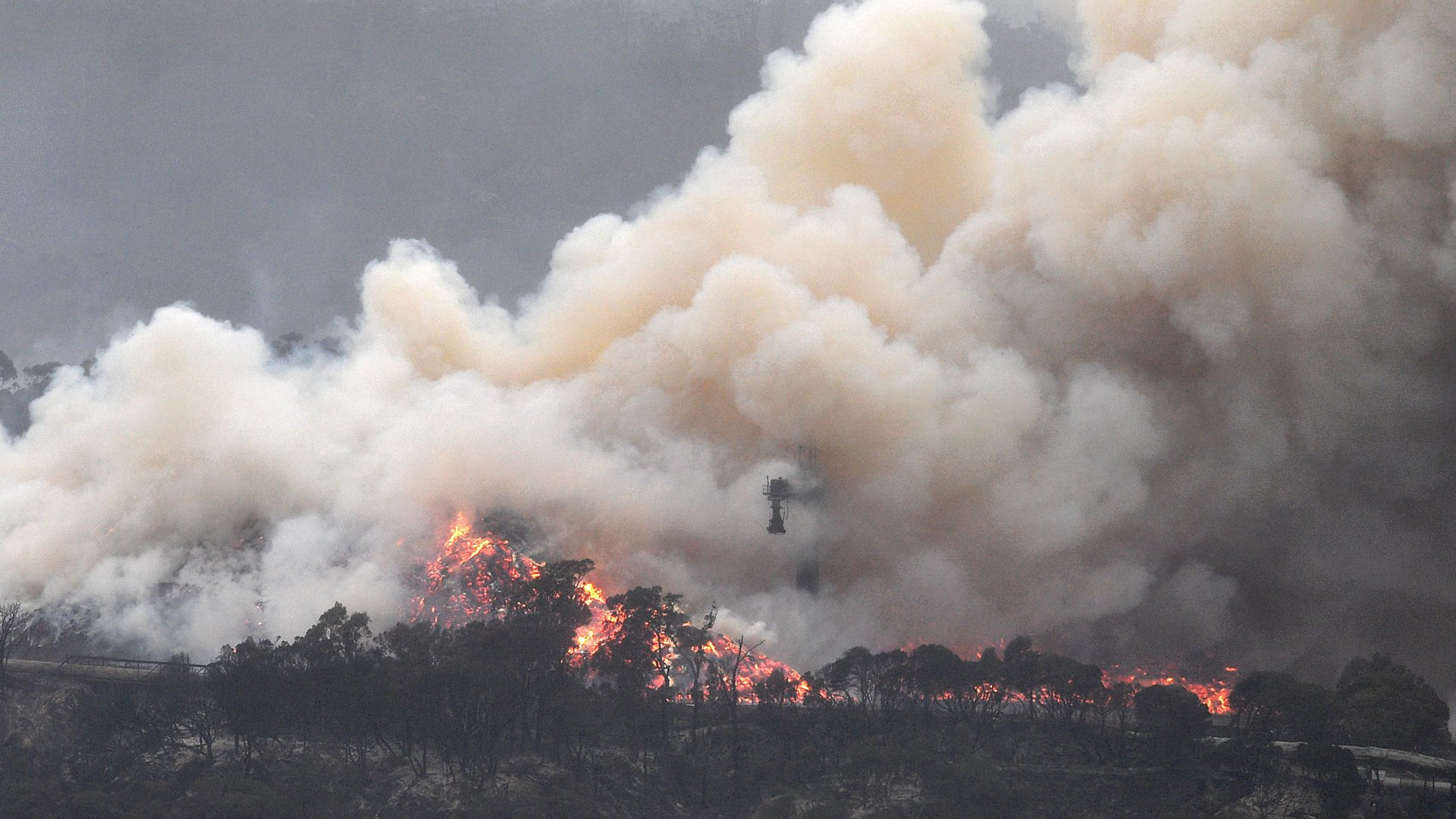 """Smoke raises to the sky as a woodchip mill burns in Eden, in Australia's New South Wales state on January 6, 2020. (Credot"""" Saeed Khan/AFP/Getty Images)"""