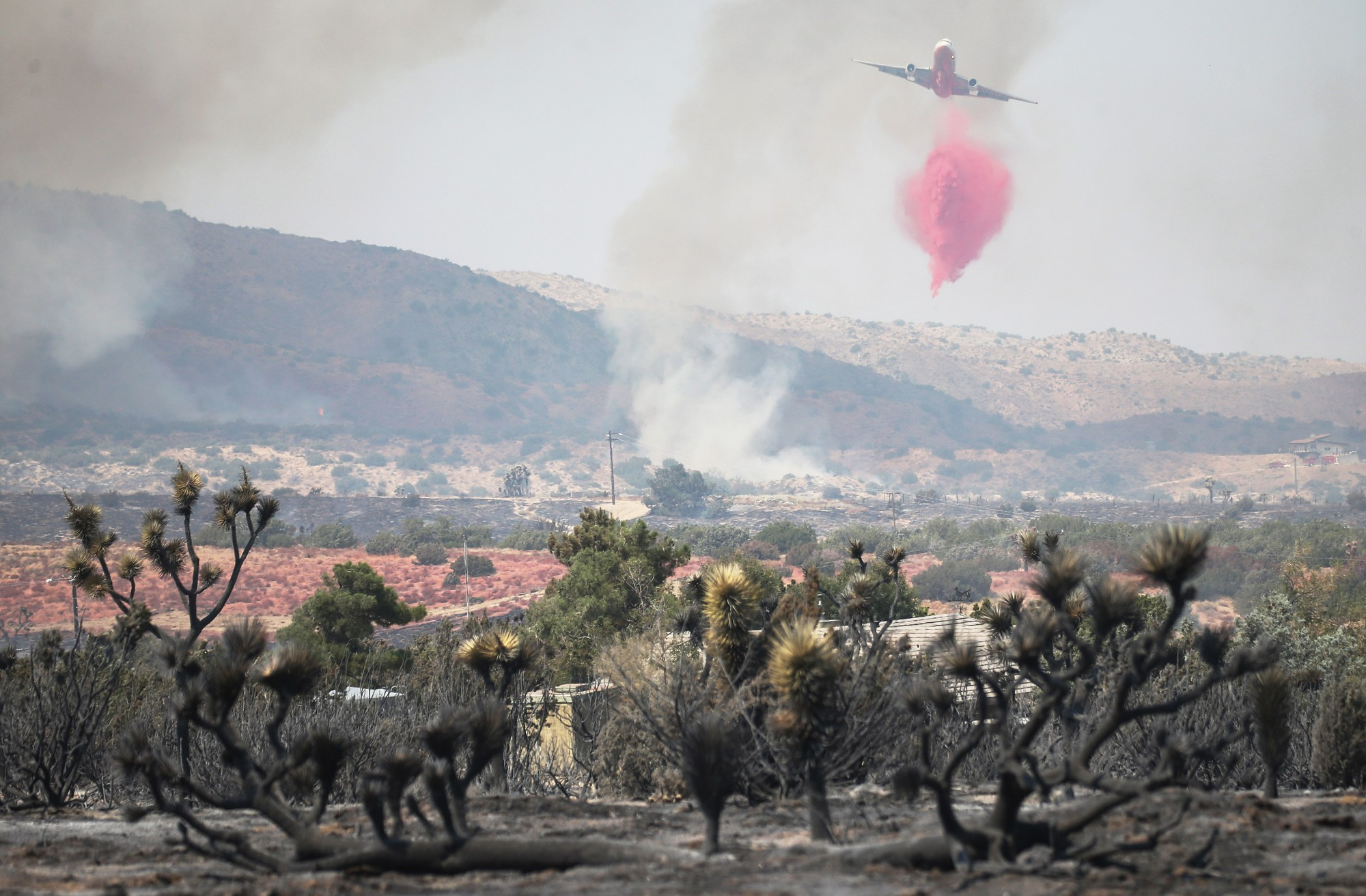 A firefighting aircraft drops the fire retardant Phos-Chek as the Bobcat Fire continues to burn on Sept. 19, 2020 in Juniper Hills, California. (Mario Tama/Getty Images)
