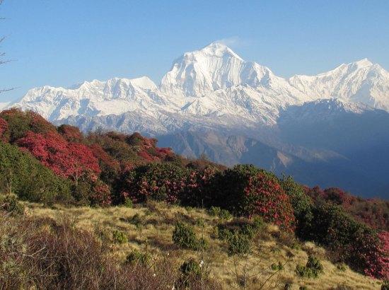 Annapurna Conservation Area