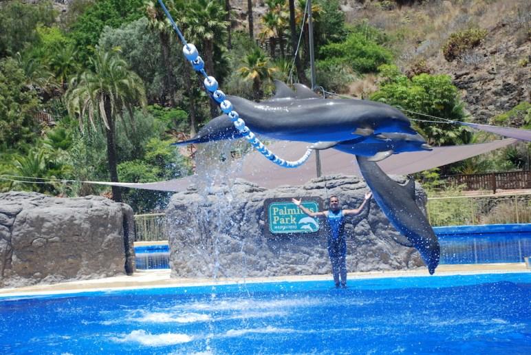 Palmitos Park. Można tu zobaczyć m.in. pokaz delfinów.