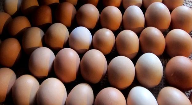 Rwanda imports 300,000 eggs from Uganda