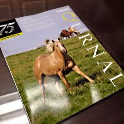 June 2015 Quarter Horse Journal Cover