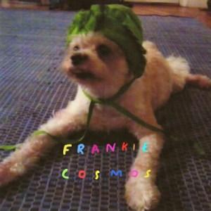 #10 Zentropy by Frankie Cosmos
