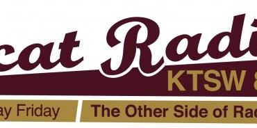 bobcat radio