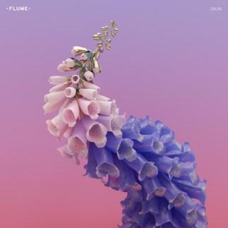 Flume, Skin