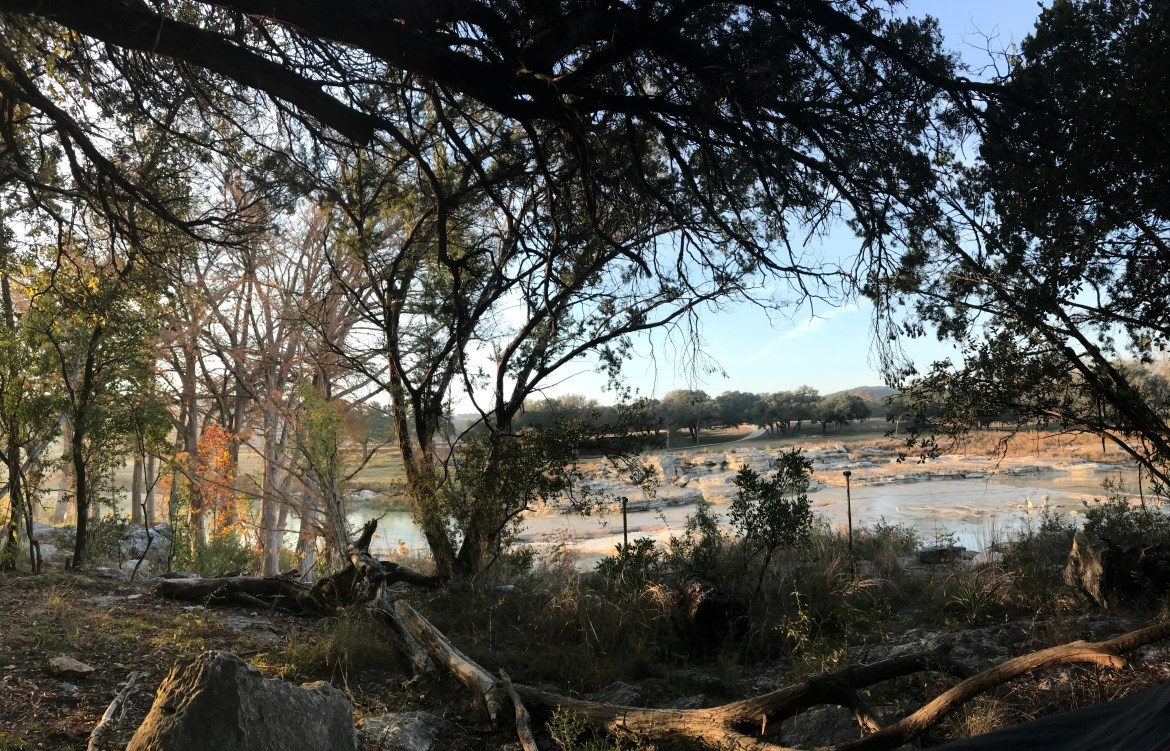 a wide picture of the trees and river