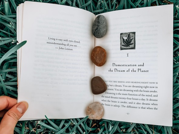 open book with four rocks on the spine