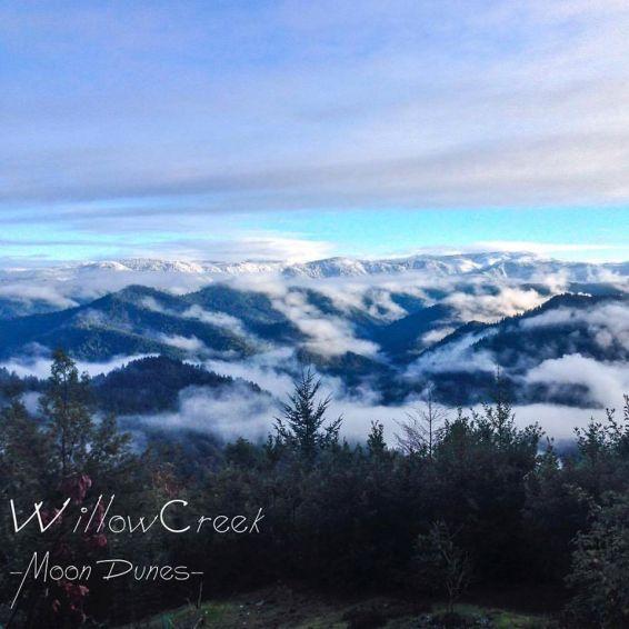 "Album art for ""Willow Creek"""