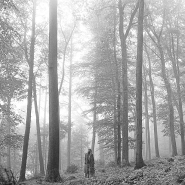 The visual is a photograph of Taylor Swift in a forest photographed in black and white.