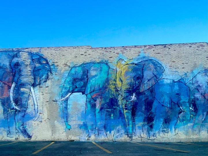blue and purple elephant mural
