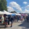 Six Reasons to Go to the San Marcos Farmers Market