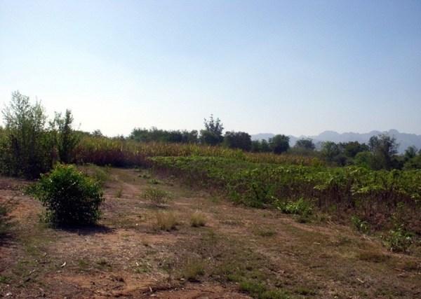 ให้เช่า ที่ดินติดถนน กาญจนบุรี ลาดหญ้า