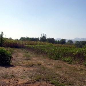 ให้เช่า ที่ดินติดถนน กาญจนบุรี ลาดหญ้า ขนาด 21ไร่