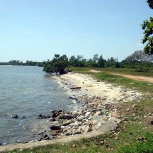 ที่ดิน ติด ทะเล ระยอง แกลง หาดส่วนตัว กว้าง 200 เมตร