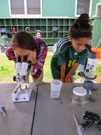 Microscopes at Loko Ea