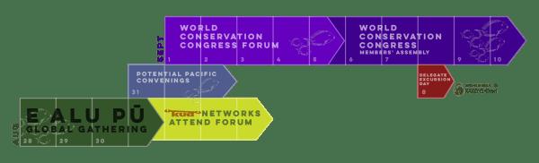 WCC Global EAP Timeline