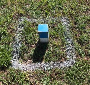 Photo of kubb in a painted square.