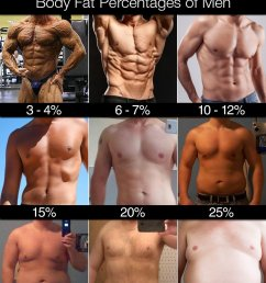 3 4 body fat ridiculously lean many bodybuilders drop to a body fat percentage of about 3 4 when they are preparing for competitions  [ 900 x 1215 Pixel ]