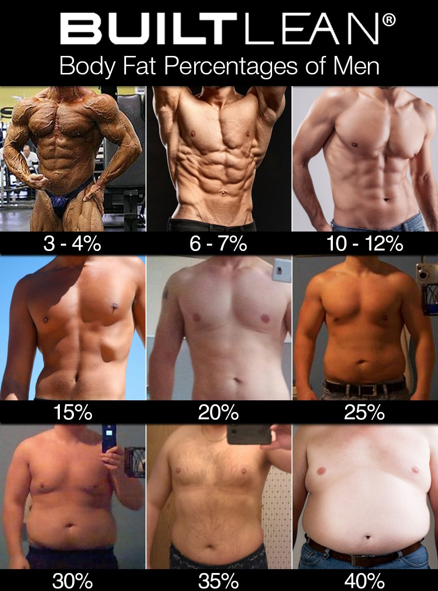 medium resolution of 3 4 body fat ridiculously lean many bodybuilders drop to a body fat percentage of about 3 4 when they are preparing for competitions