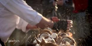 RID-rekord-zerschlagene-Kokosnusspaare4