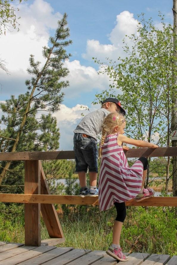 Ausflüge mit Kindern, Ausflug im Schwarzwald, Ausflugstipps Schwarzwald, Schwarzwald, Baden-Württemberg, Ausflugstipps im Schwarzwald mit Fürstenberg Natur Radler