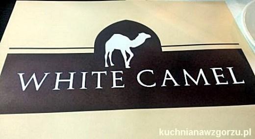 white camel krakow