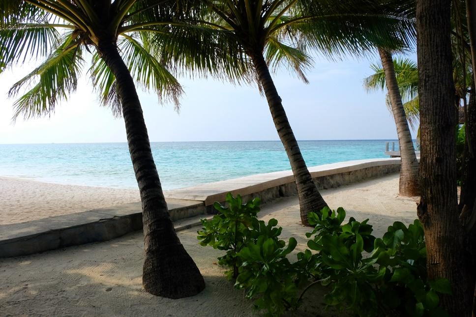 kucuk-martha-maldives-maldivler-velassaru-maldives-39