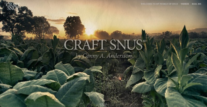 webbplats craftsnus.se