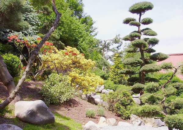 Ogród Japoński w Jarkowi