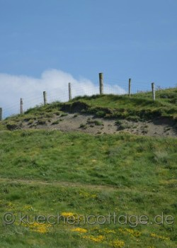 Cliffs of Moher (15)