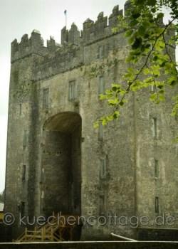 Freilichtmuseum und Bunratty Castle bei Clare (3)