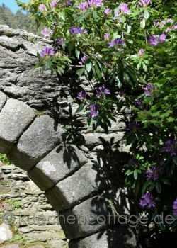 Glendalough (17)