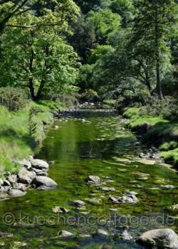 Glendalough (19)