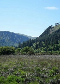 Glendalough (9)