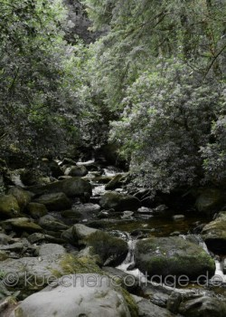 Torc Waterfall Killarney (2)