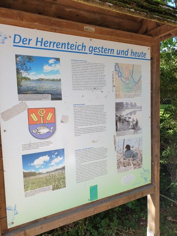 Herrenteich Reinfeld