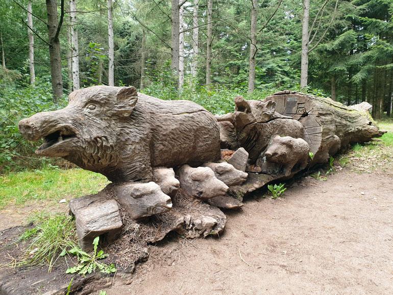 Trappenkamp Holzwildschweine