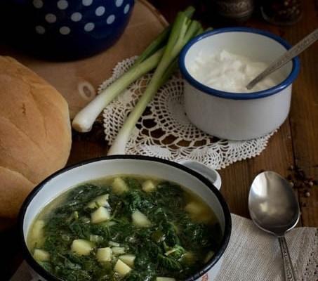 Čorba od koprive / Nettle soup
