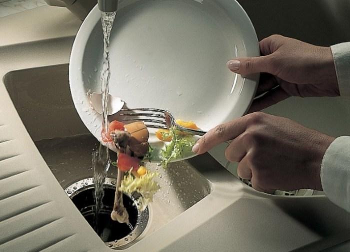 Раковина и остатки пищи