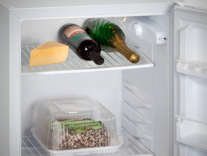 Холодильник без морозильного отсека